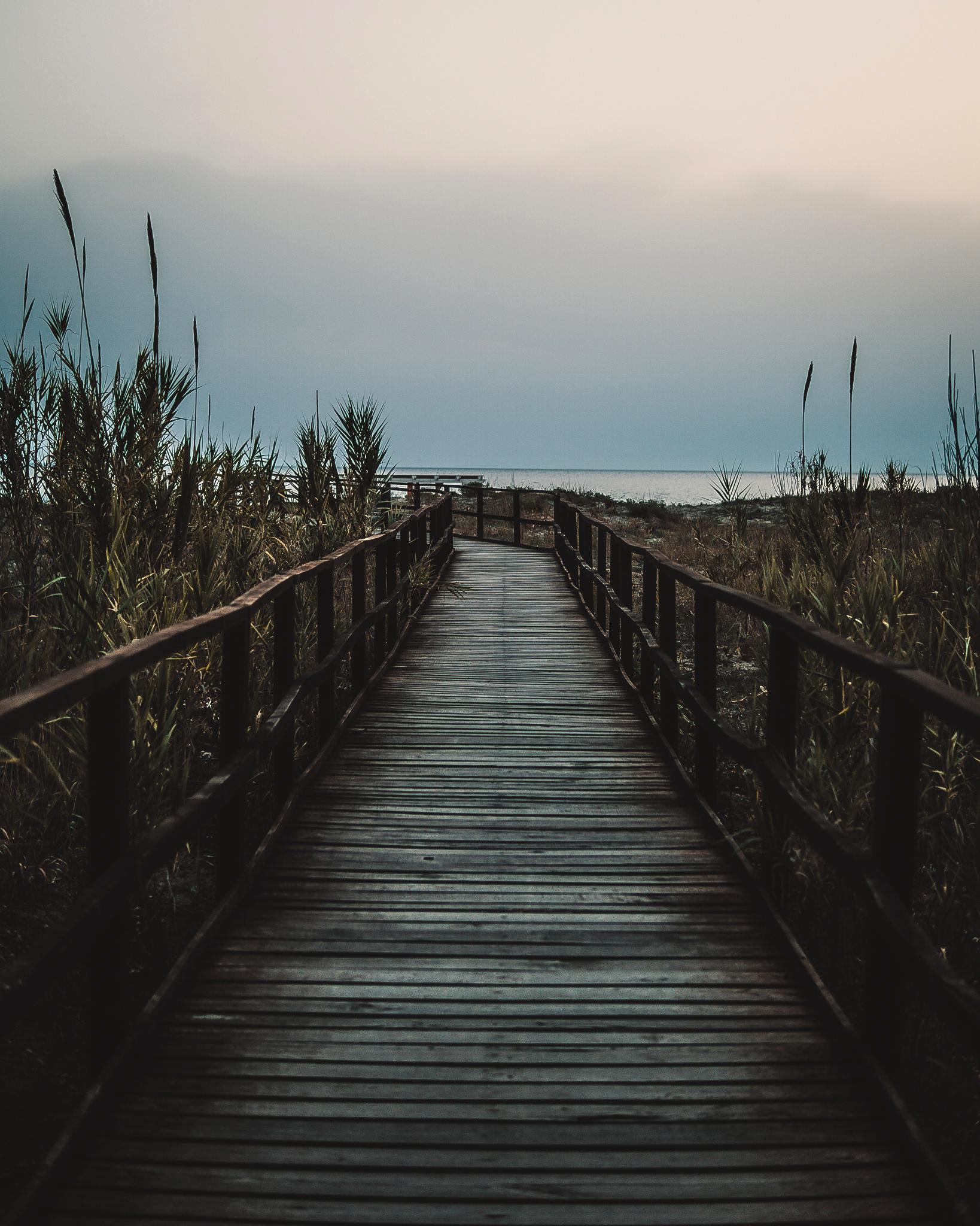 Zeno fugge ed ottiene la libertà arrivando al mare
