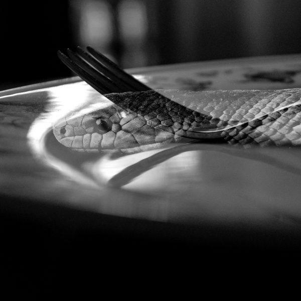 binge eater vede il cibo come un serpente che striscia